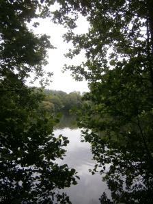 Pale Park Pond, Wardour Castle. Part of a system of man-made ponds, possibly medieval in origin.