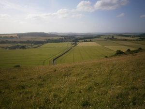 Looking north-west from downland above Swallowcliffe